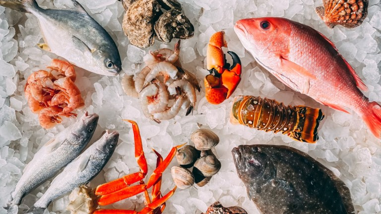 KOISRA Wins Indian Embassy Research Tenders for Korea Seafood & Food Markets